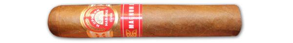 h upmann magnum 54 single